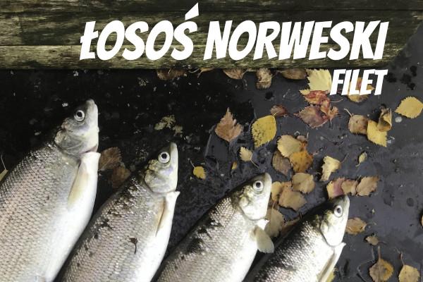 LuckyFish.pl-LOSOS-NORWESKI-FILET.jpg