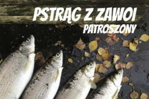 LuckyFish.pl-PSTRAG-Z-ZAWOI-PATROSZONY.jpg